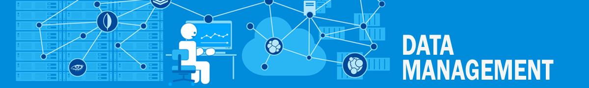 LP-Head-Data-Management-Webinar.png